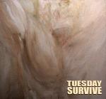 Couverture pour une reprise de Vivre ou Survivre de Daniel Balavoine